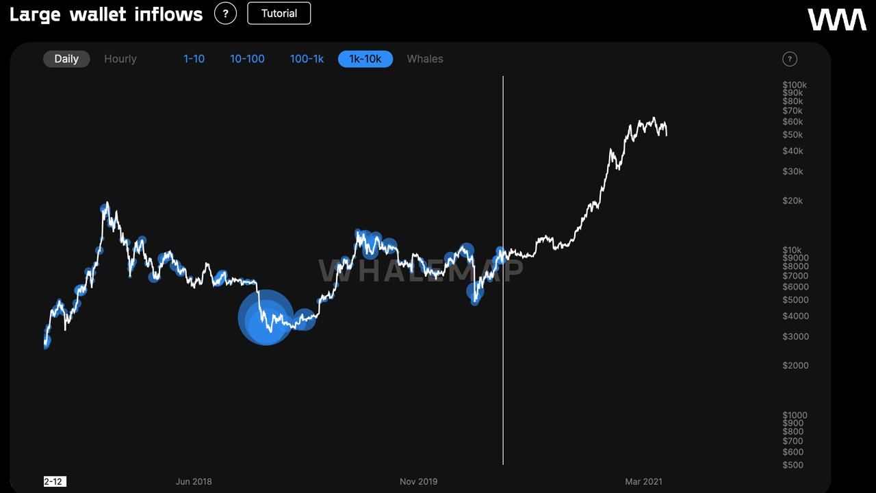 Bitcoin Whale Count Shrinks- Speculators Assume Trickle Distribution or Possible Address Reorganizations
